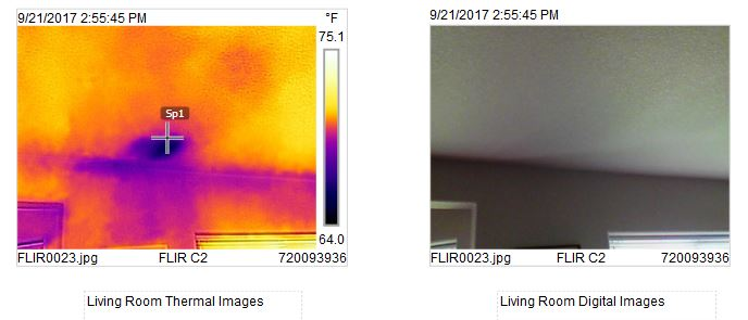 Thermal Image - Living Room